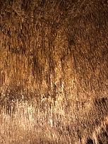 Grotte del Drach con concerto e gita in barca inclusi