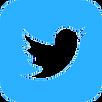 iconmonstr-twitter-3-240.png