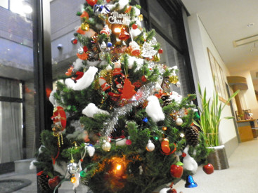 季節の飾り ~ クリスマスシーズン到来