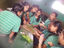 lorna's school