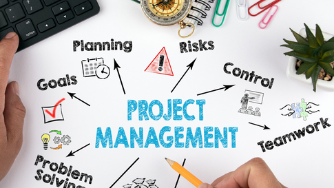 Effective Project and Programme Management