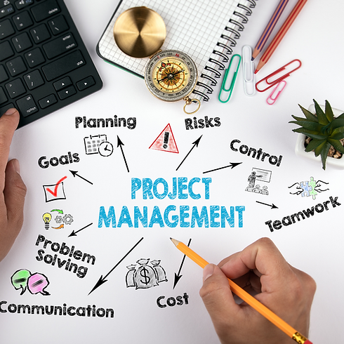 effective-project-and-programme-manageme