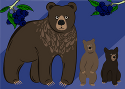 Bunch Of Bears