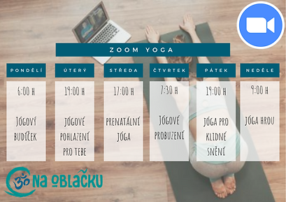 zoom yoga.png