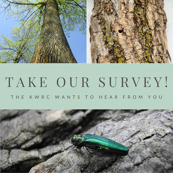 eab survey pic.png