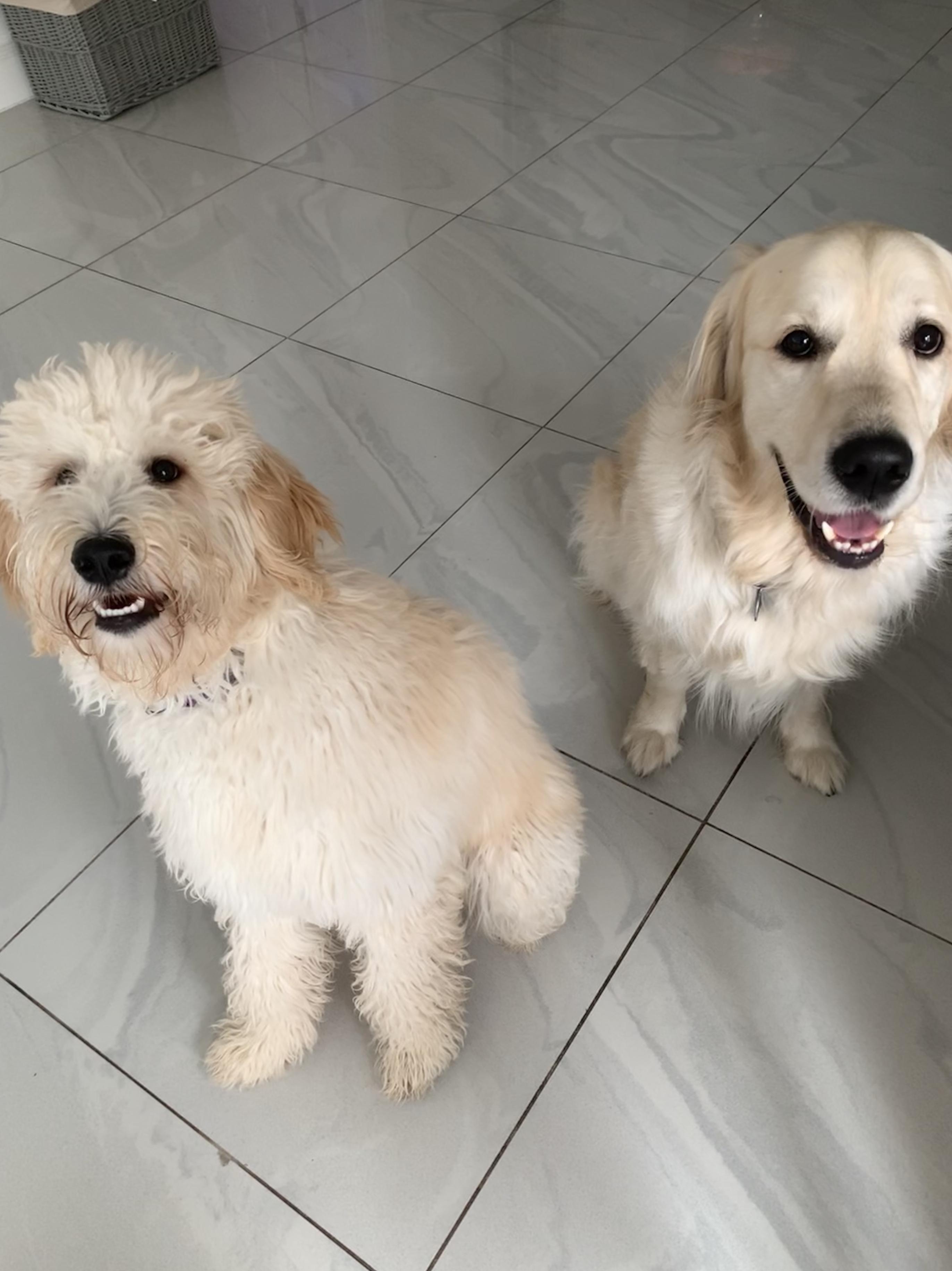 Lola & Thor