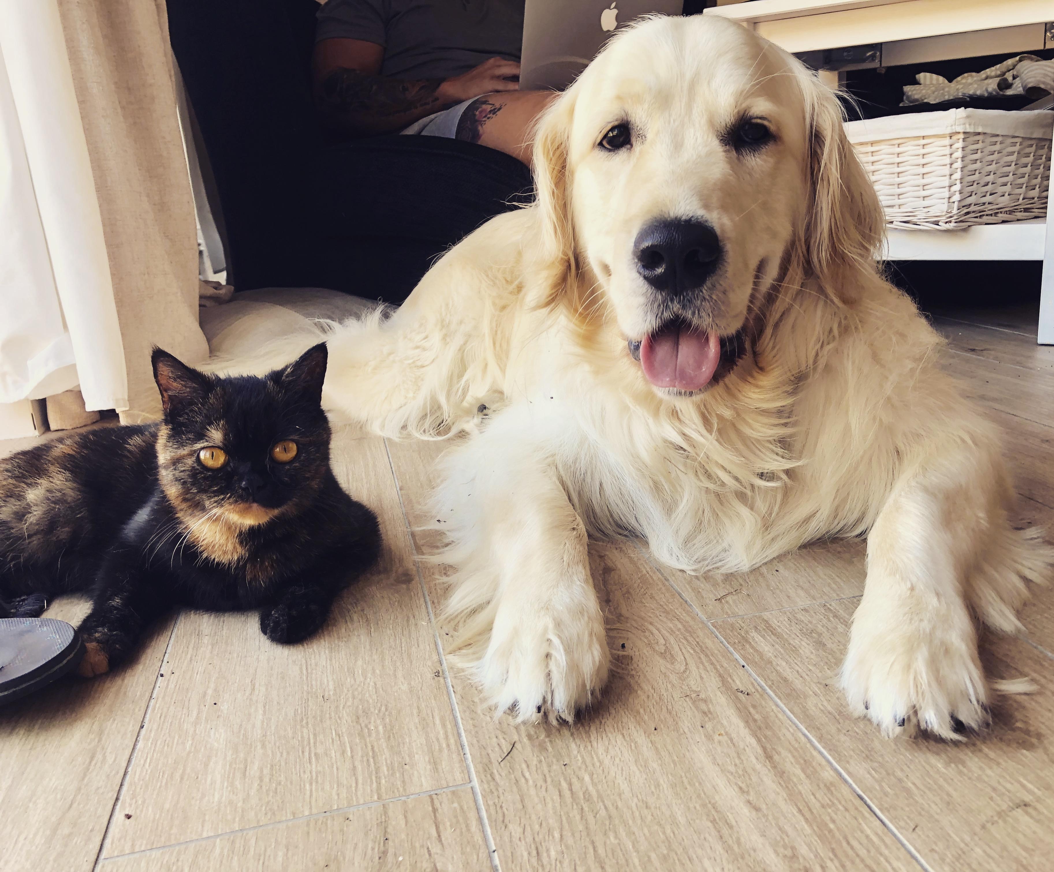 Roo & Thor