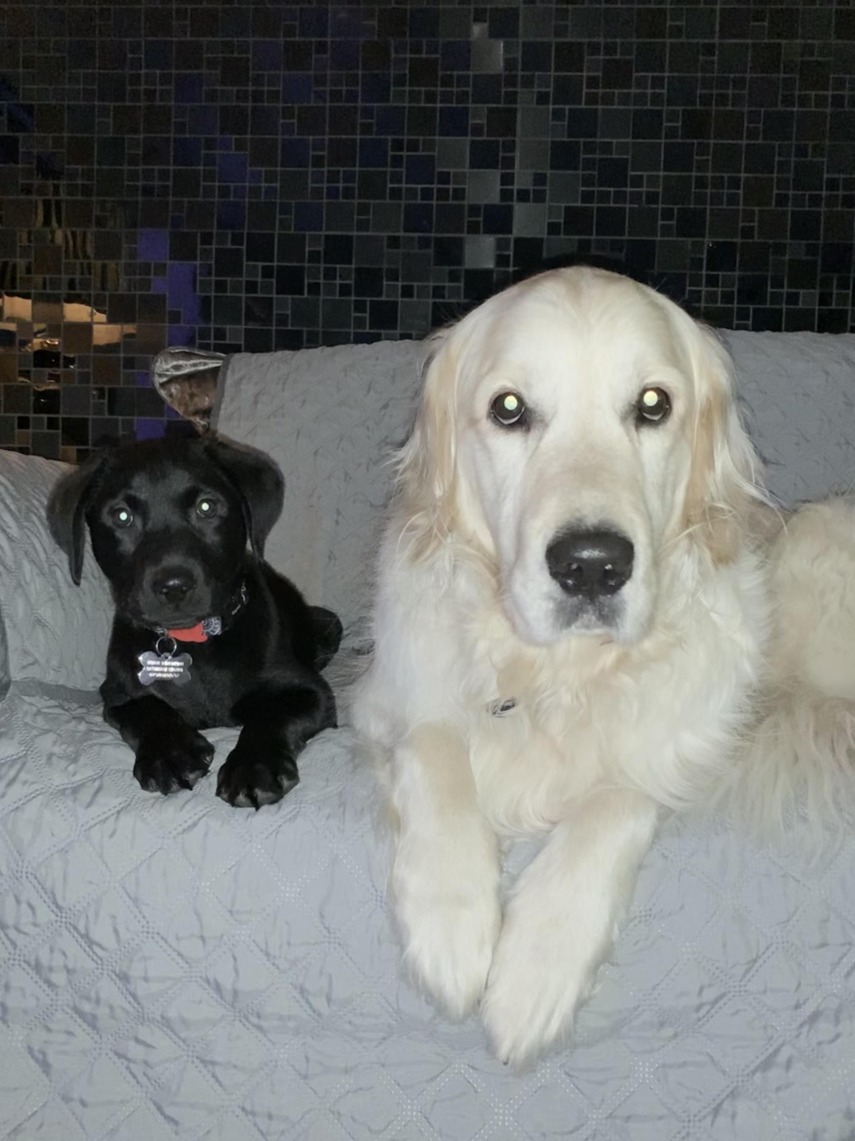 Titan & Thor