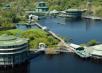 26/05/2020 Blog 15: Tree Hotels