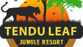 Sustainable Wildlife Tourism by Tendu Leaf Jungle Resort