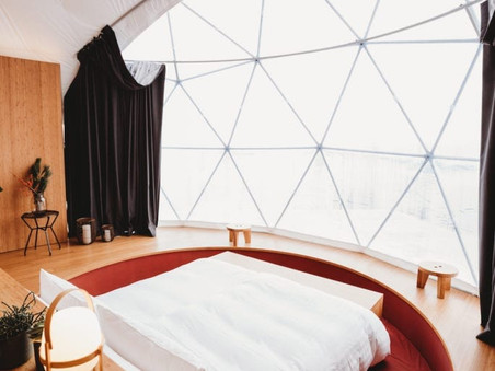 Blog 11: Green Luxury Hotels