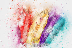 feathers-2561511_1920.jpg