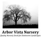 ArborVistaNursery.png