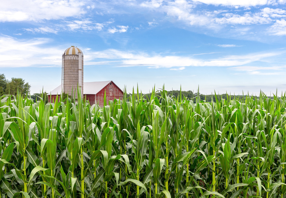 SLIDER-Farm.Field.3000.jpg
