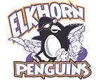 Elkhorn Penguin Swim Team 2.jpg