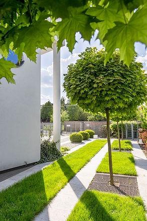 aménagement extérieur et création de jardins à Blegny, Liège