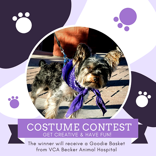 The winner will receive a Goodie Basket from VCA Becker Animal Hospital.png