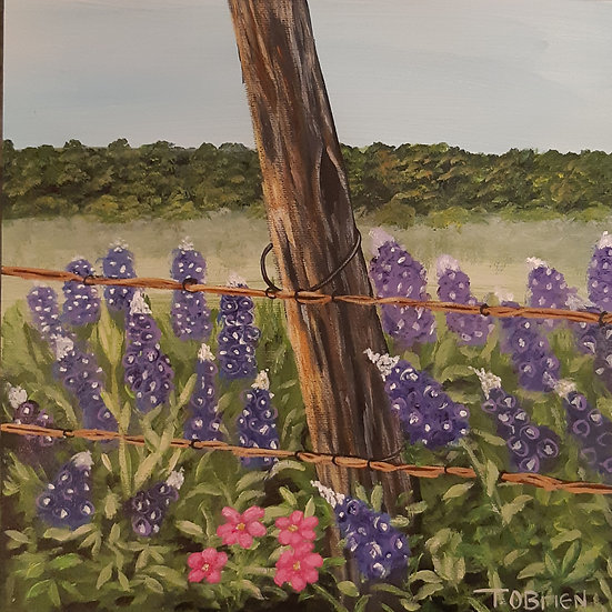 FLOWERS BY THE FENCE - Tammy O'Brien