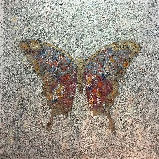 BUTTERFLY - Marc Janus