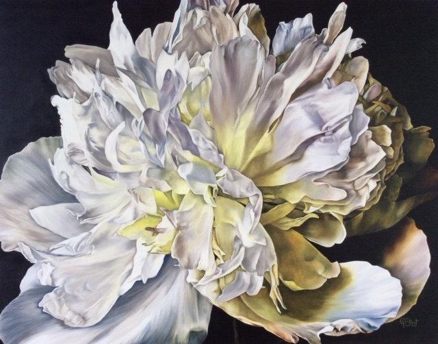 DUCHESSE DE NEMOURS PEONY - Glenys Flint
