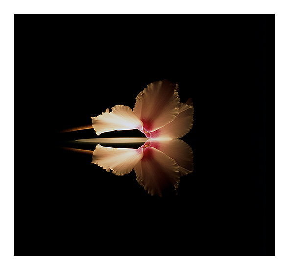 NO ESPELHO / AT THE MIRROR - Andrea Mendes
