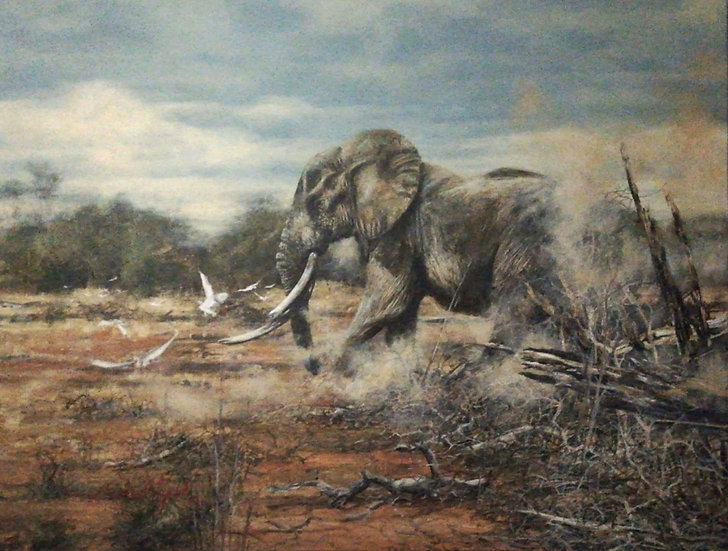 ELEPHANT CHASING EGRETS - Michael Lynch