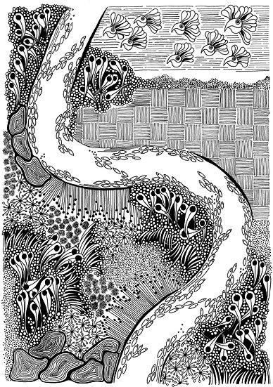 MURRAYLANDS - Barbara Martin