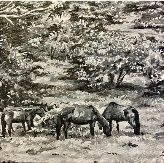 HORSES - Réna King