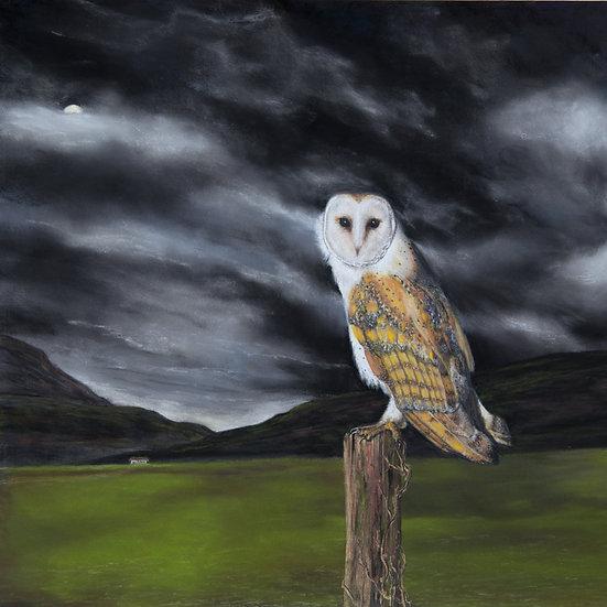 THE NIGHT IS MINE - Alexandra Lavizzari