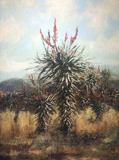 FIELDS OF ALOE, BURSTS OF RED - Michael Lynch