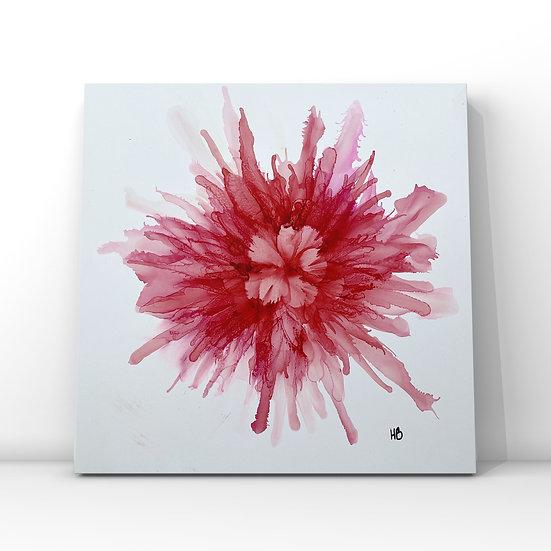 PINK BLOOM - Helen Baxter