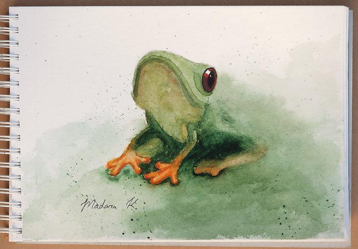 little frog.JPG