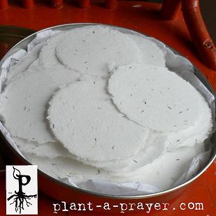 Plant-a-Prayer™.jpg