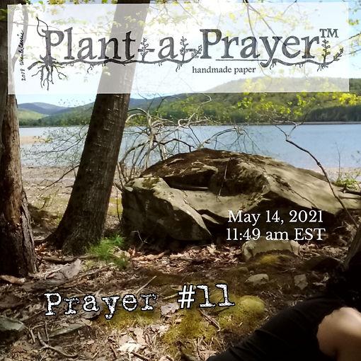 Plant-a-Prayer™ Prayer #11.jpg