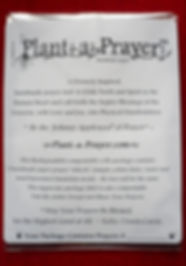 Plant-a-Prayer™_Compostable_Sugarcane_La