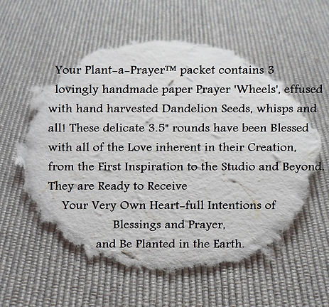 Product_Description_Plant-a-Prayer™.jpg
