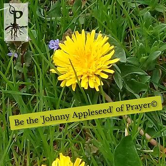 Plant-a-Prayer™ Be the Johnny....jpg