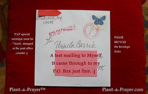 Mailing Envelope.jpg