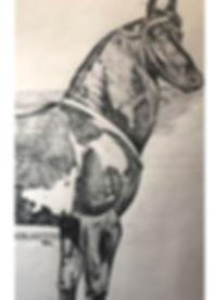 Fries Paard (detail uit een grotere teke