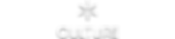 Culture logo hvid skygge.png