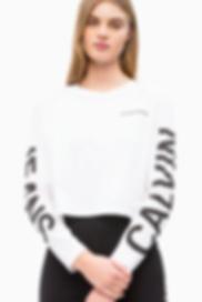 Calvin Klein b.png