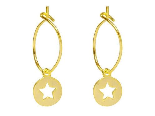Earrings twinkle star