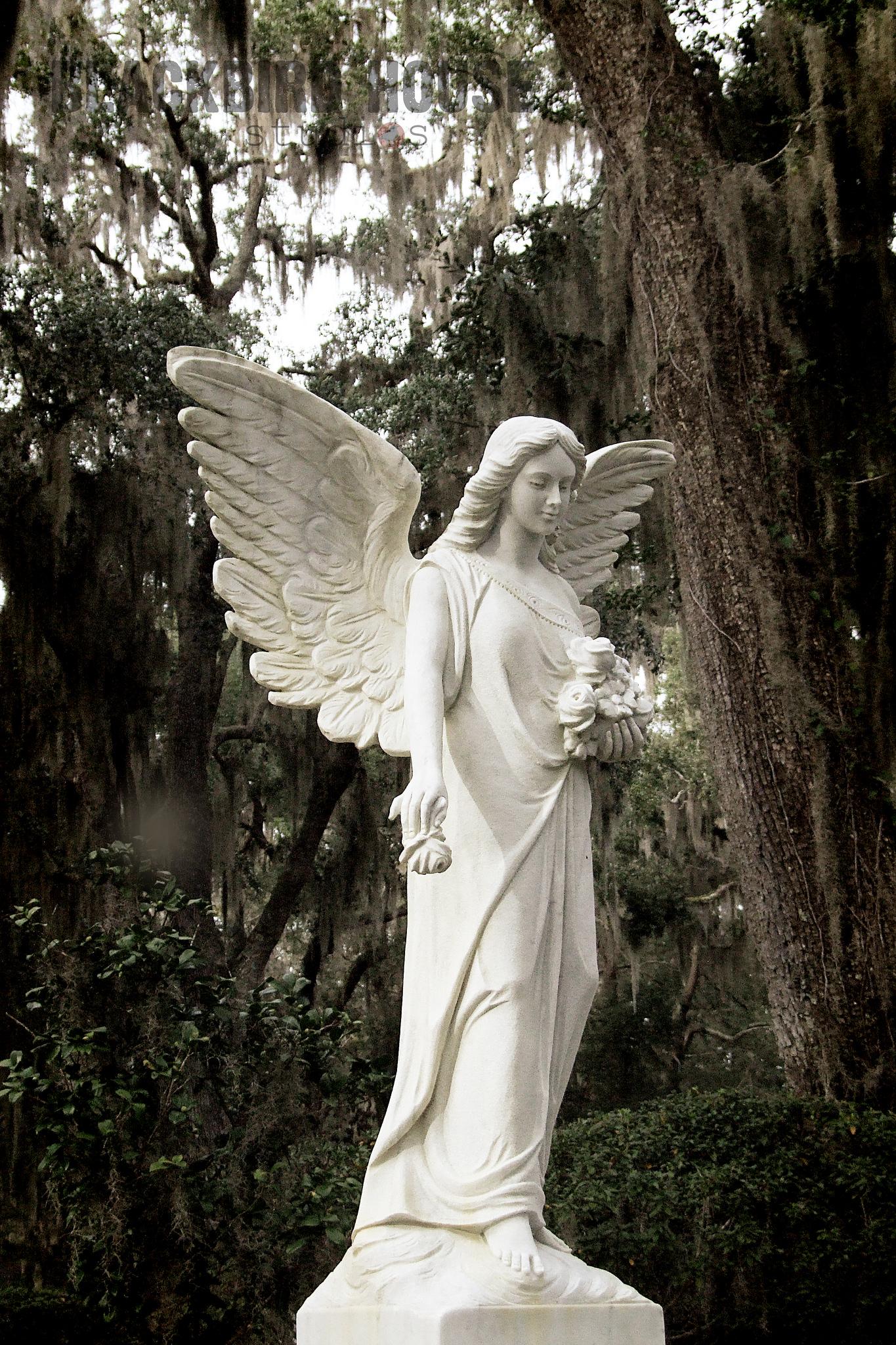 Angel of St. Simon