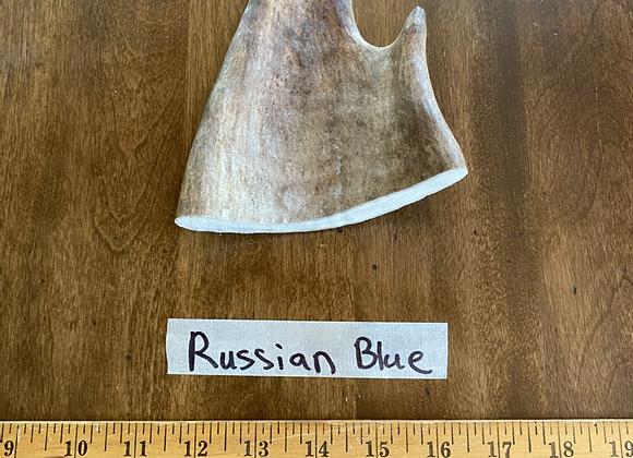 Russian blue (tender soft top)