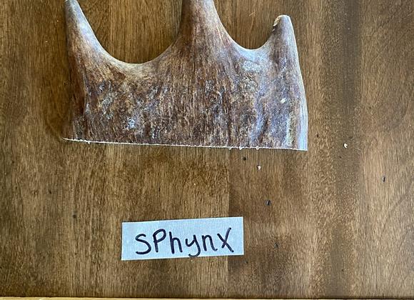 Sphynx ( tender soft top)