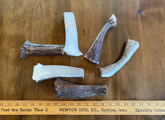 "Medium splits(base of antlers, 5"" -7"" long)"