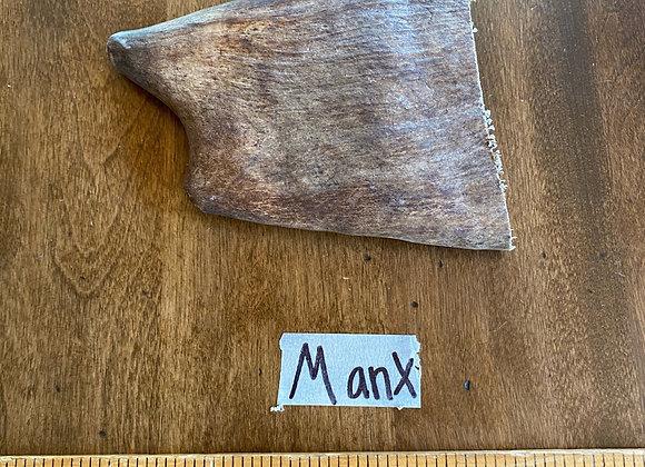 Manx (small dog/soft tender top)