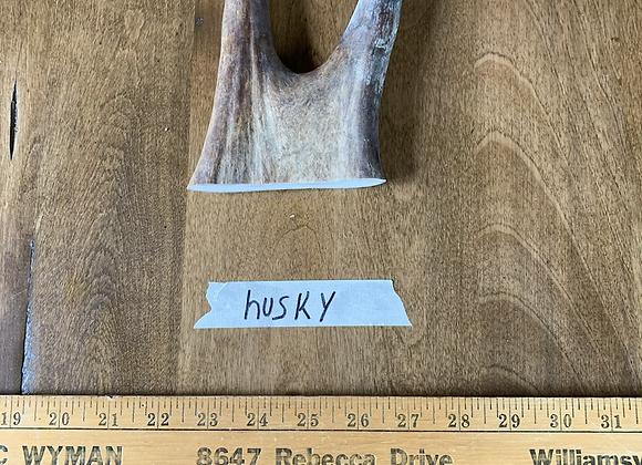Husky(Tender top)