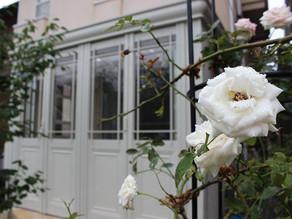 「薔薇が似合う暖蘭物語」町田市H様邸