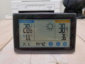 令和3年6月25日(金)のガーデンルーム気温情報です。神奈川県相模原市南区